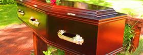 Vaneer Cardboard coffin range